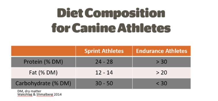 Diet Composition for Canine Athletes