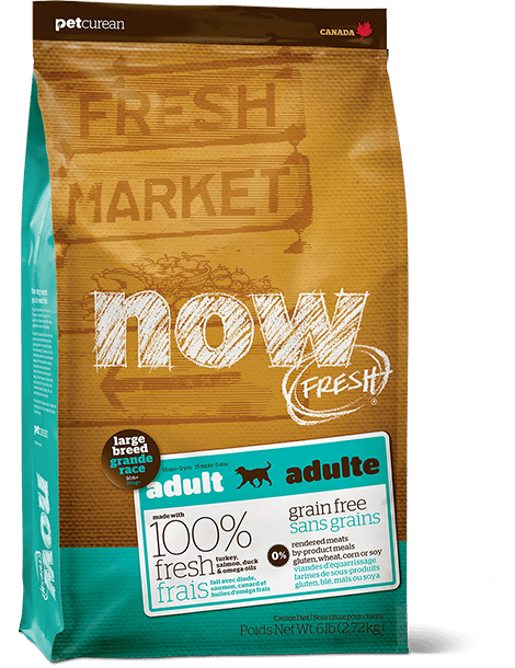 What Is The Best Dog Food for a Large Breed Dog? | Now Fresh Grain-Free Large Breed Adult Recipe | Dogfood.guru