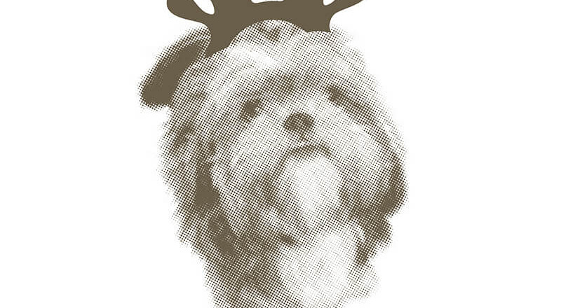 A dog wearing a festive antler hat