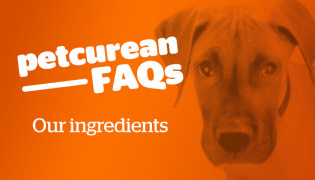 Ingredients FAQs