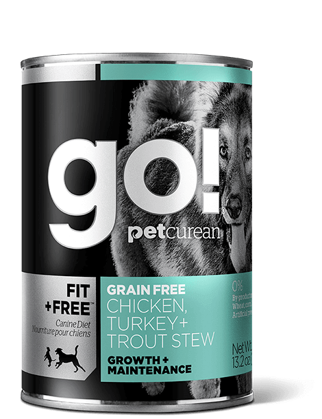 GO! FIT + FREE Grain Free Chicken, Turkey + Trout Stew Recipe for dogs