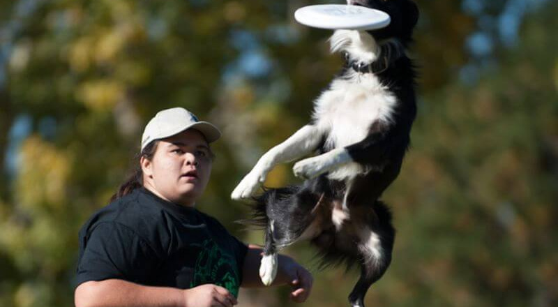 A woman throwing a frisbee at her dog