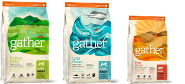 GATHER Together - Bags