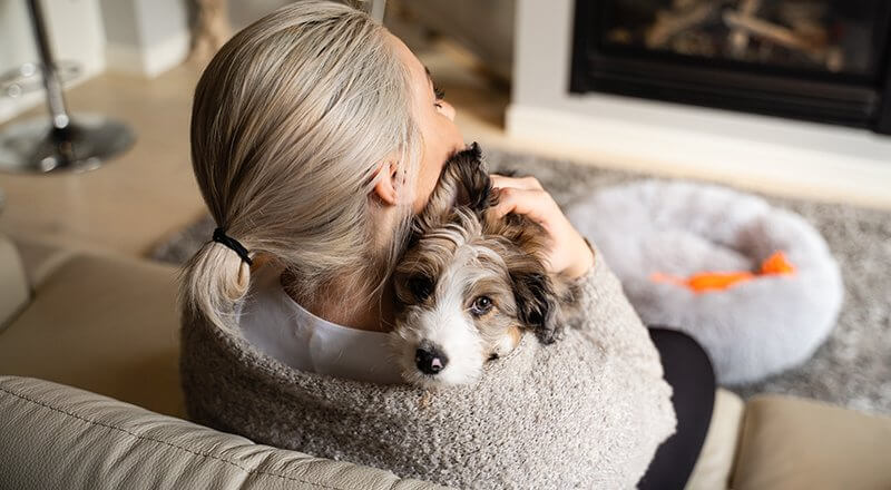 Owning a Dog and Your Health