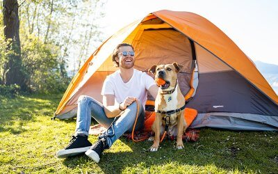 5 Important Questions Before Camping with Your Dog